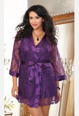 Dreamgirl Stretch Lace Robe